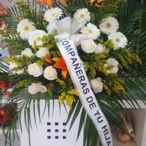 Centro Funerario Lilium, Margaritas y Rosas Blancas
