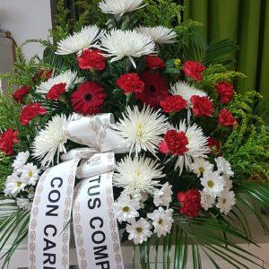 Centro Funerario Gerberas Rojas, Margaritas y Anastasias Blancas